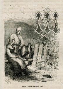 Беларускае Палессе, Тыпы Магілёўскай губерніі, 1882