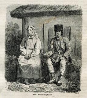 Беларускае Палессе, Тыпы Мінскай губерніі, 1882