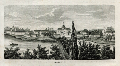 Беларускае Палессе, Нясвіж, 1882